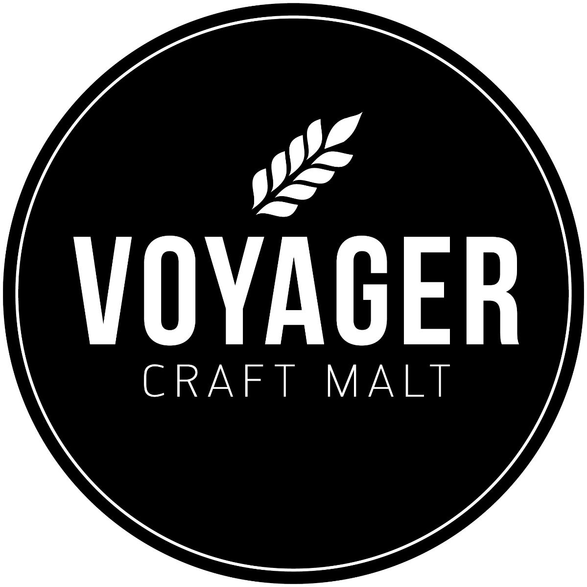 Voyager Triticale